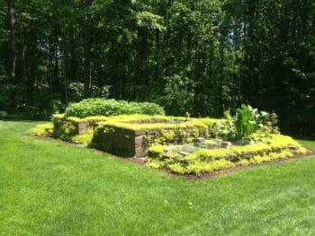 Grass Seed & Fertilizer