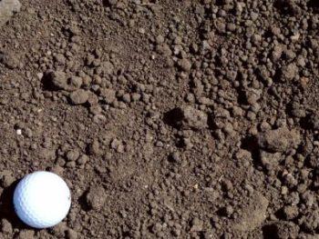 Soils & Soil Blends