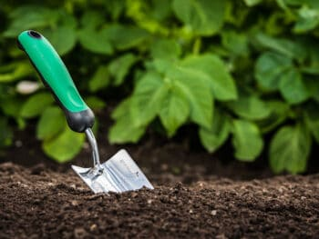 Topsoil, Compost & Soil Blends